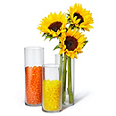 Fillable Cylinder Centerpieces