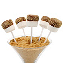 S'more Pop Favor