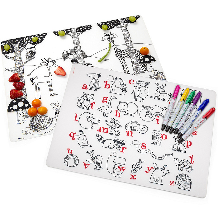 Reusable Mat & Markers Activity Set