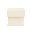 Square Favor Boxes - Ivory Shimmer