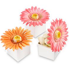daisy delight gerbera daisy favor box